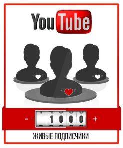 100 живых подписчиков на канал YouTube