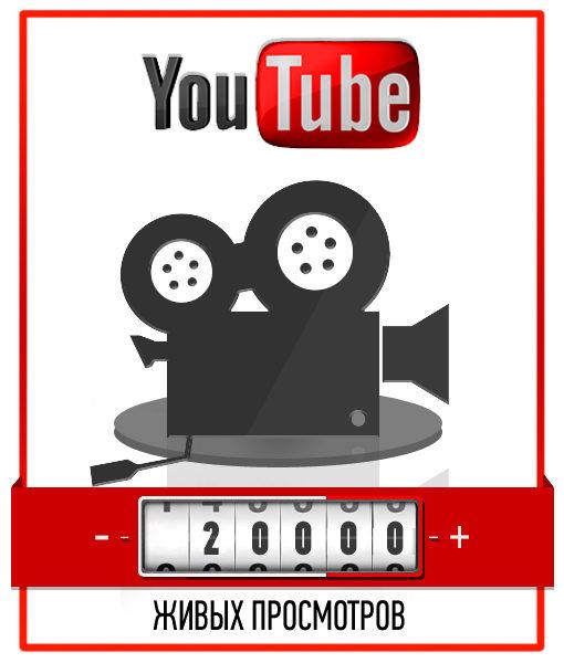 20000 Живых просмотров на YouTube с рекламы AdWords – Не накрукта!