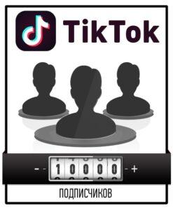 Привлечение 10000 подписчиков в Тик Ток