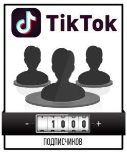 Привлечение 1000 подписчиков в Тик Ток