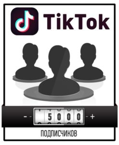 Привлечение 5000 подписчиков в Тик Ток