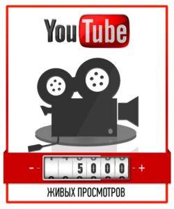 5000 Живых просмотров с рекламы AdWords - Не накрукта